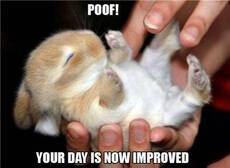 Poof! Your day is now improved!
