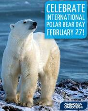 Celebrate International Polar Bear Day February 27!