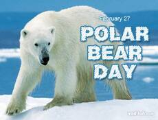 February 27 Polar Bear Day